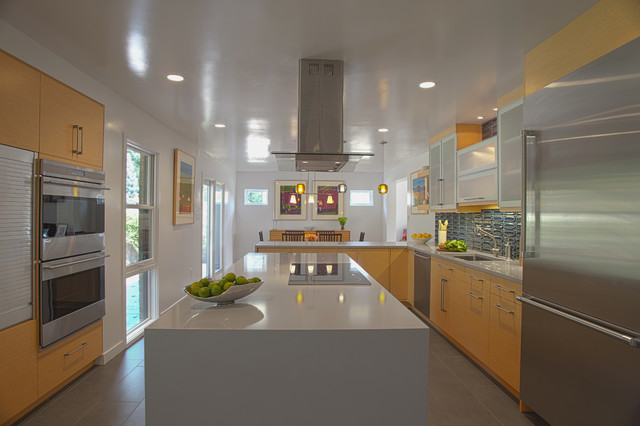 Eco friendly kitchen renovation modern kitchen dc for Eco friendly kitchen products