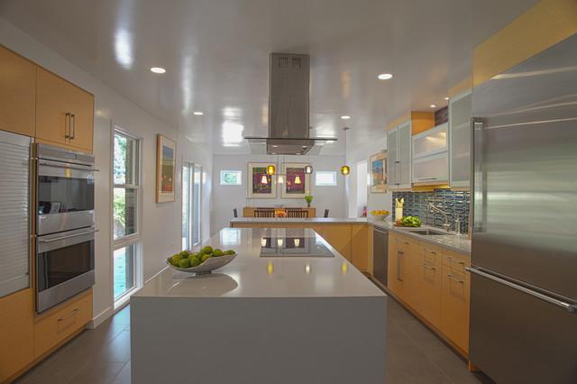 Eco Friendly Kitchen Renovation Modern Kitchen Dc
