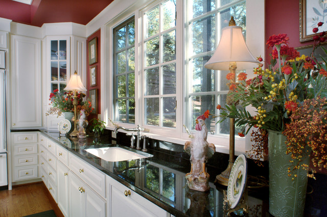 Kitchen Sink and Windows traditional-kitchen