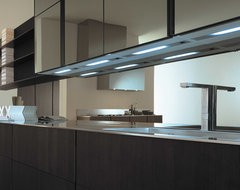 Kitchen contemporary-kitchen-cabinets
