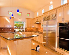 Kitchen with Barrel Vaulted Ceiling and Clerestory Windows modern kitchen