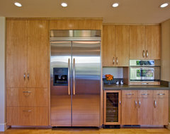 kitchen with european-style cabinetry made by Bill Fry Construction modern-kitchen