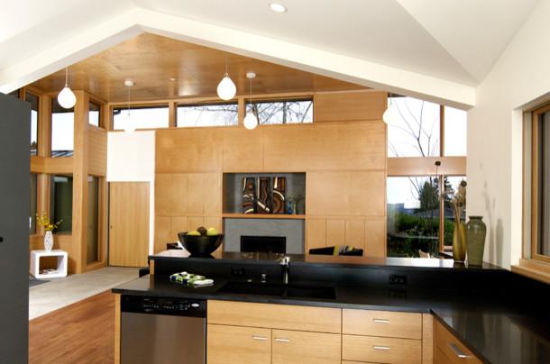 Knowles Residence - Kitchen modern-kitchen
