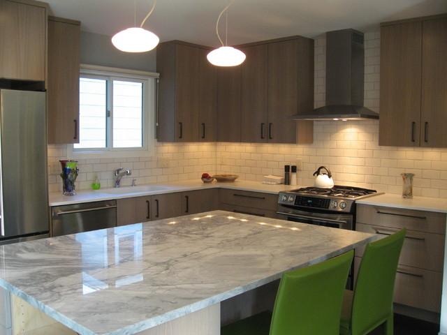 Koch Ave - Kitchen contemporary-kitchen