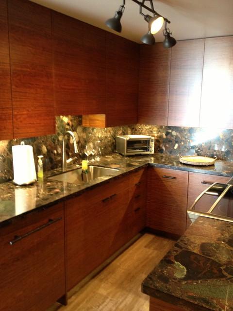 Krauss Condo tropical-kitchen