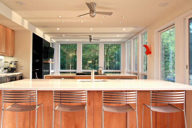Kitchen cabinets bloomingdale nj - Lake Iosco House Interior Modern Kitchen Other By