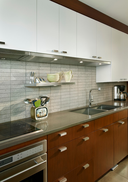Lake Shore Drive Residence contemporary-kitchen