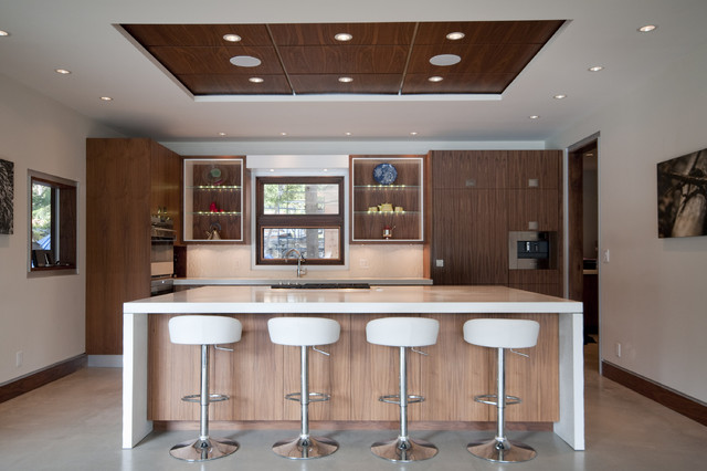 Lakefront Custom Home contemporary-kitchen