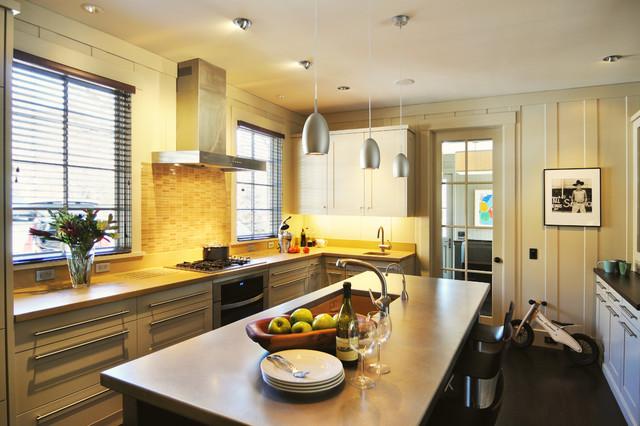 Lakeview Park Renovation contemporary-kitchen