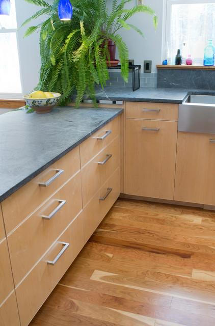 Lee NH Kitchen contemporary-kitchen