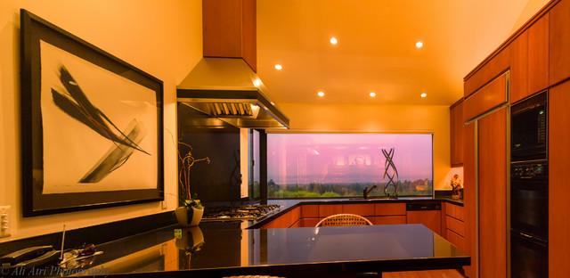Lenehan Residence modern-kitchen