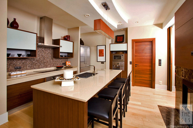 Life as it should be contemporary-kitchen