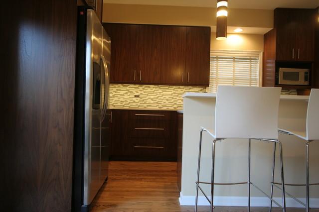 Lincoln Park Home contemporary-kitchen