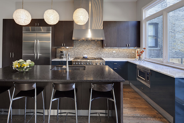 Lincoln Park Residence contemporary-kitchen