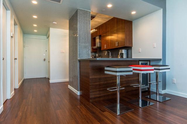 Lincoln Road Condominium Remodel contemporary-kitchen