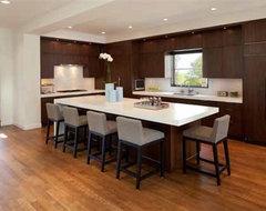 Linden Hills Contemporary contemporary-kitchen