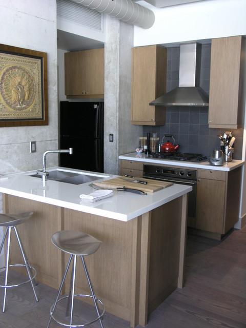 loft contemporary-kitchen