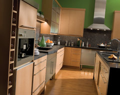 Lofty Kitchen Concept contemporary-kitchen