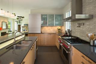 contemporary kitchen chicago