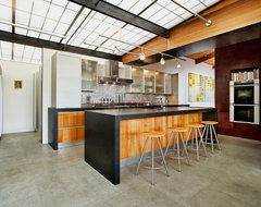Lovell Residence modern kitchen