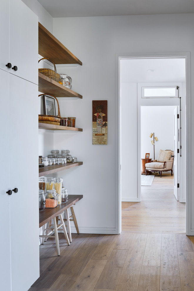 Kitchen pantry - scandinavian single-wall medium tone wood floor and brown floor kitchen pantry idea in Austin with flat-panel cabinets and white cabinets