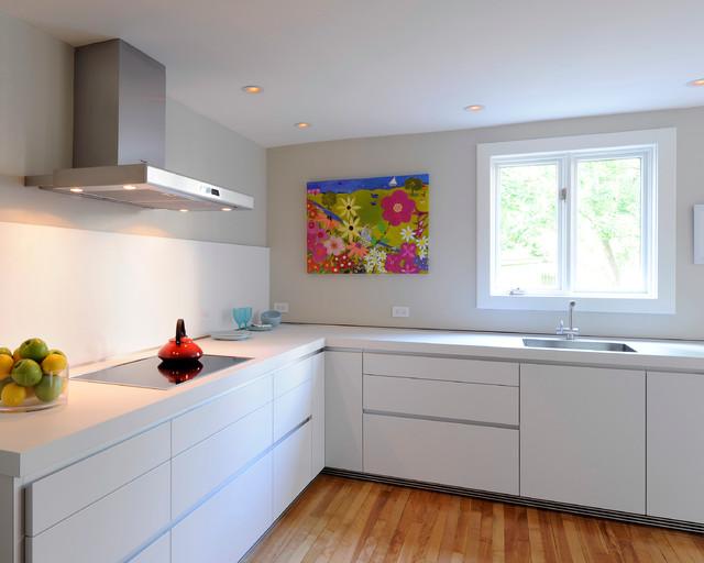 Mackay House Modern Kitchen Ottawa By Denys Builds