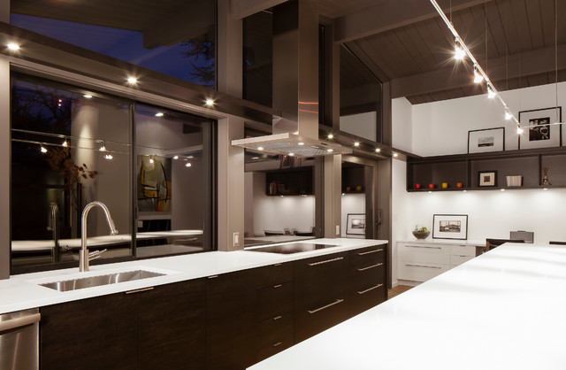 Madison Park Contemporary Kitchen Seattle By Heliotrope Architects