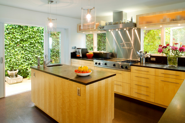 Magnolia home - Contemporary - Kitchen - Seattle - by Donnally Architects