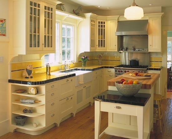 Mahoney Architects & Interiors: A gourmet retro kitchen traditional-kitchen