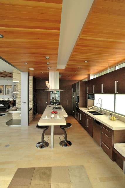 Malbu Road modern-kitchen