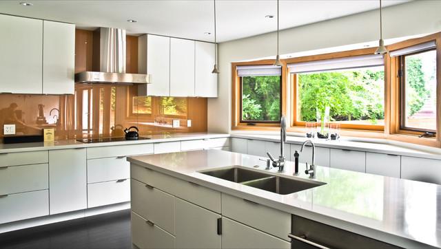 mango design co modern-kitchen