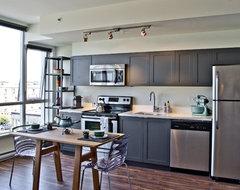 mango design co contemporary-kitchen