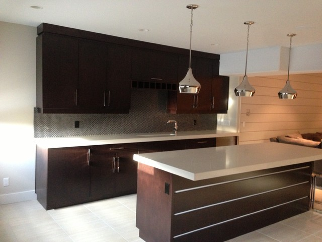 Maple contemporary-kitchen