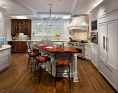 Marchmont Residence Kitchen - Shaker Heights traditional-kitchen