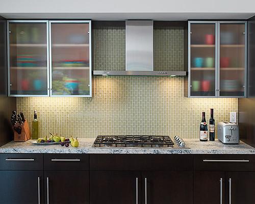 marin remodel modern kitchen