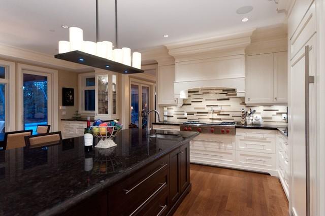 Marine Manor contemporary-kitchen