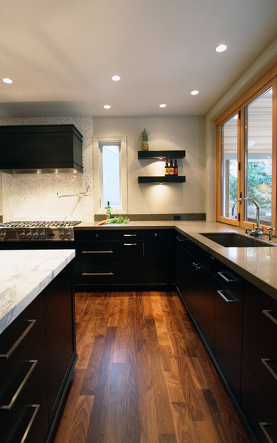 Marshall Park Remodel contemporary-kitchen