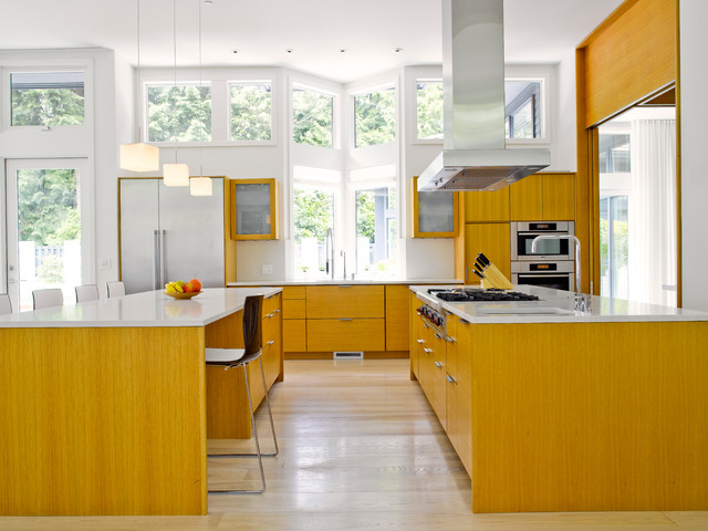Medina Remodel contemporary-kitchen