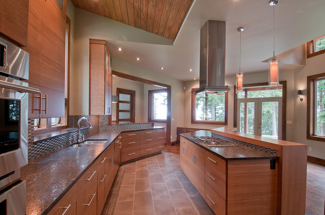 Meridian contemporary-kitchen