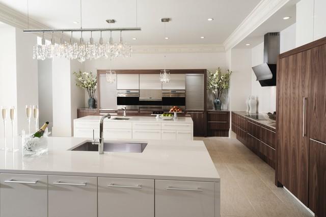 MH Kitchen contemporary-kitchen