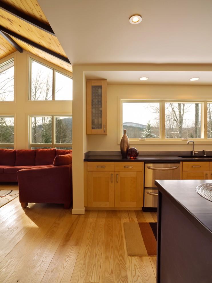 Kitchen - contemporary kitchen idea in Burlington