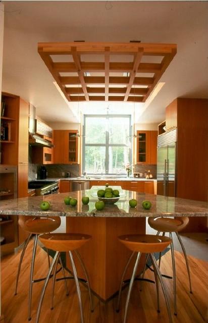 Michigan Residence modern-kitchen