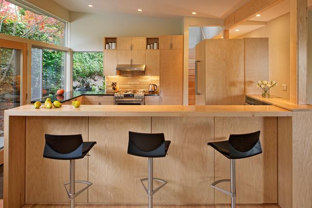 Mid Century Kitchen Remodel Contemporary Kitchen