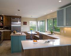 Mid Century Kitchen Remodel modern-kitchen
