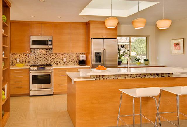 Mid Century Kitchen modern-kitchen