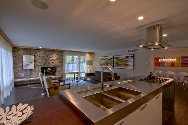 Mid Century Modern Whole House Renovation Design By