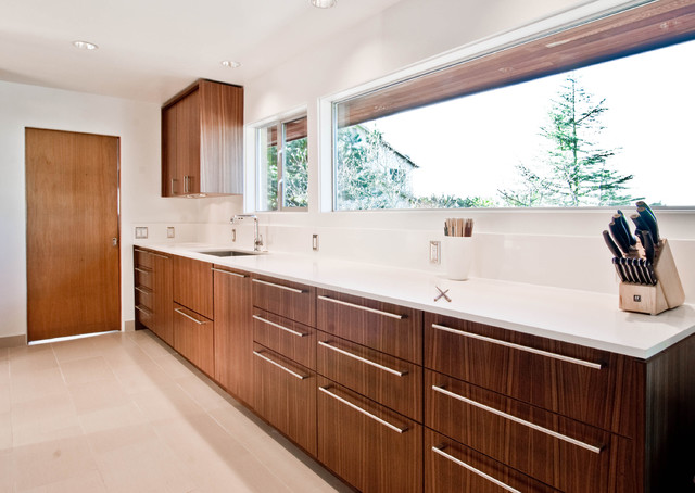 Midcentury kitchen for Mid century modern kitchen cabinets