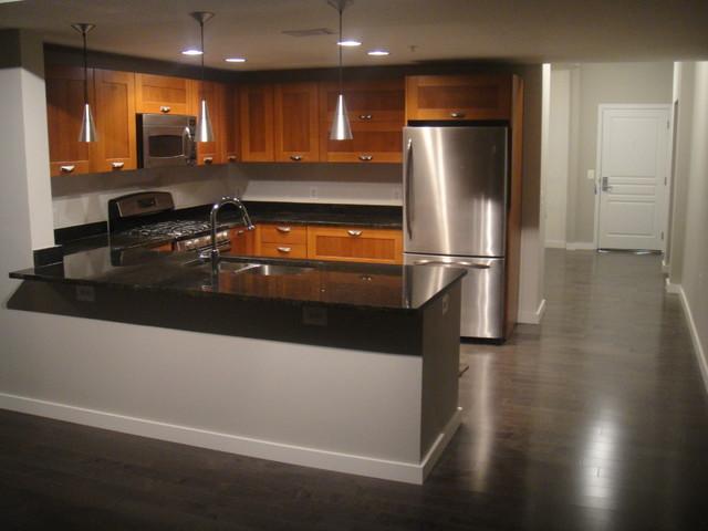 Midtown Alexandria Zen modern-kitchen