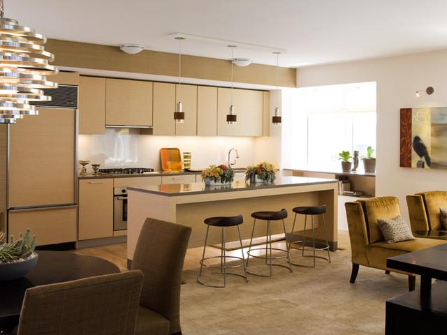 Millennium Towers San Francisco contemporary-kitchen