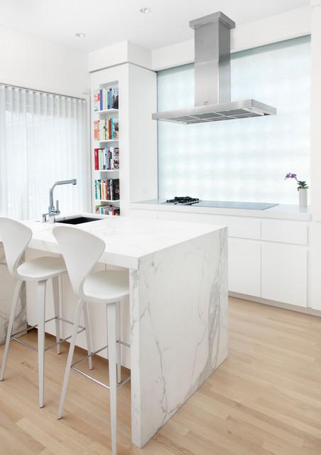 Minimal Luxury scandinavian-kitchen